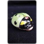 【陶笛】瓢蟲(綠)
